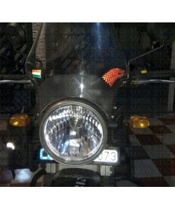 Wolf sticker on RE himalayan wind screen