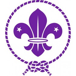 World scouts logo stickers / decals