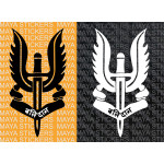 Balidan dagger and wings decal sticker of Indian army special forces