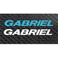 Gabriel shockers logo stickers for suzuki  gixxer sf and other bikes