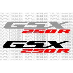 Suzuki GSX250R logo sticker in dual color combination