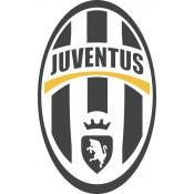 Sports sticker (21)